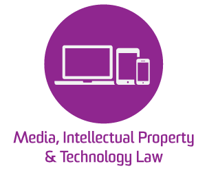 Media_intellectual_property_technology_law